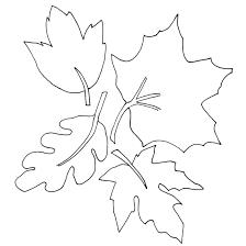 fallen autumn leaves coloring enfants autumn