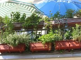 balkon blumenkasten mit halterung darf außerhalb des balkons blumenkästen anbringen refrago