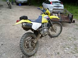 2008 pgo t rex 125 cp 125d pics specs and information