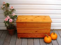 Build A Toy Chest Kit by Amazon Com Diy Kit Cedar Chest And Storage Bench Size 30 X 13