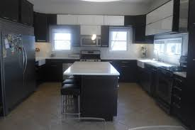 Where Can I Buy Kitchen Cabinets Kitchen Style N Model Kitchen Cabinet Ideas Kosher Small Design