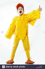 chicken halloween costumes indoor studio child boy 5 10 disguise costume duck duckling