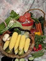 celebrating thanksgiving with montessori activities namc