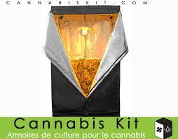 chambre de culture cannabis complete cannabis kit les meilleures armoires de culture pour le cannabis