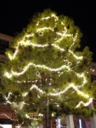 Lighted Tree Home Decor Beautiful Outdoor Christmas Lights For Trees Hall Kitchen