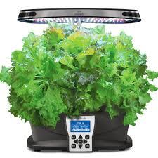 amazon com aerogarden salad greens mix seed pod kit 7 pod