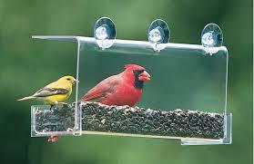 Cardinal Bird Home Decor by Duncraft Com Duncraft 742 Cardinal Classic Window Bird Feeder