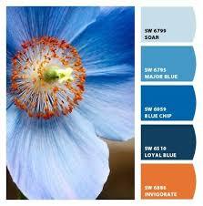 Blue Orange Color Scheme 228 Best Color Palettes Images On Pinterest Colors Colour