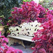 Tree Bench Ideas 39 Backyard Bench Ideas To Take A Load Off