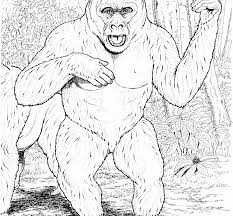 coloring page of gorilla chima gorilla coloring pages funny cute baby realistic fearsome page