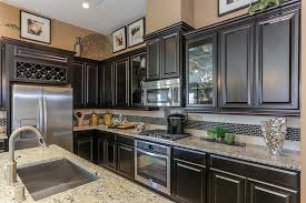 Premier Kitchen Cabinets Gehan Homes Kitchen Dark Wood Cabinets Wine Wrack Stainless