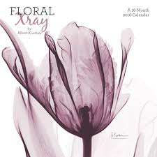 2018 floral x ray wall calendar mead mead 9781682098042