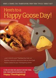 kosher goose aron s kissena farms