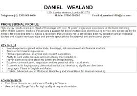 Professional Profile Resume Template Nursing Cv Template Nz