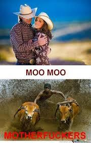 Moo Meme - moo moo by recyclebin meme center