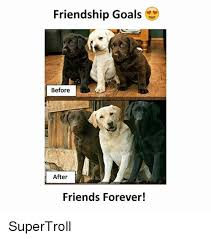 Friends Forever Meme - friendship goals before after friends forever supertroll friends