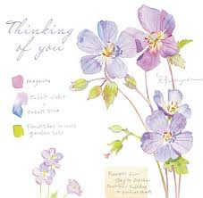 thinking of you flowers cards and gifts day one publications