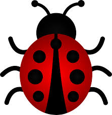 lady bug clipart free download clip art free clip art on