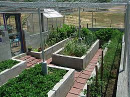 water trough planter garden pictures