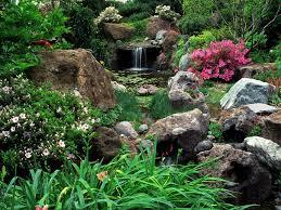 flowers rocky pond garden flowers rock waterfall small flower
