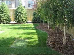 easy backyard ideas easy backyard landscaping ideas greenhouse easy backyard