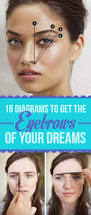 Where To Get Your Eyebrows Threaded 16 Eyebrow Diagrams That Will Explain Everything To You