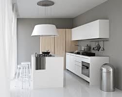 hottes de cuisine design îlot central cuisine fonctionnel 30 photos et conseils utiles