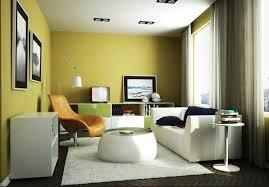 choosing interior paint colors for ideas nerolac colour