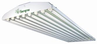 grow light bulbs lowes home lighting 30 smart fluorescent grow lights lowes compactnt