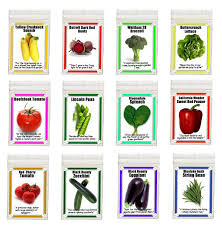 amazon com heirloom garden vegetable seeds non gmo easy growers