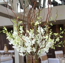 orchid centerpiece orchid wedding centerpieces