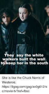 White Walker Meme - th hey say the white walkers built the wall tokeep her in the south