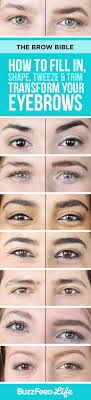 how to how to fill in shape tweeze trim and transform your eyebrows