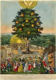 museum the tree of which twelve manner of