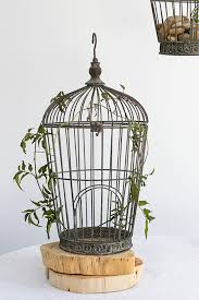 decorative birdcages bird nests u0026 more saveoncrafts