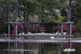 Botanical Garden Chapel Hill by Wilmington North Carolina U0027s Botanical Treasure U2013 Airlie Gardens