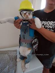 Construction Worker Costume Coolest Construction Worker Costume Ever For A Cat