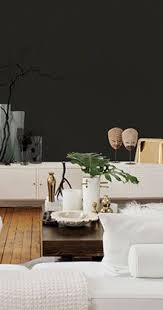 53 best black and white color scheme images on pinterest
