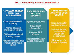 Rural Finance In Selected Ifad Financed Operations Dr Ifad In Rural And Agricultural Development Operations And