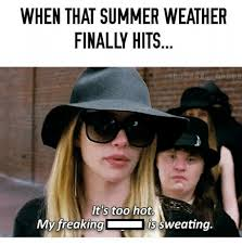 Hot Weather Meme - when it s too hot memes