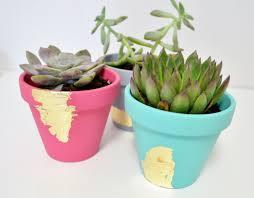 make gold leaf succulent planters mod podge rocks