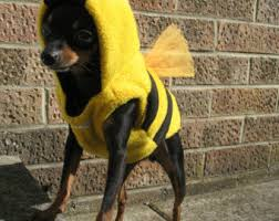 Small Puppy Halloween Costumes Etsy Place Buy Sell Handmade
