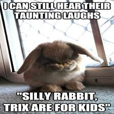 Silly Rabbit Meme - coolest 22 silly rabbit meme wallpaper site wallpaper site