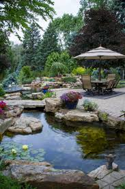 Patio Pond by 17 Best Pond Images On Pinterest Landscaping Plants And