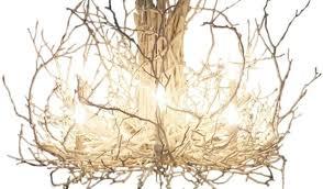 branch chandelier white hickory branch chandelier