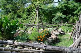teepee plant support u2013 how to make a teepee trellis for veggies