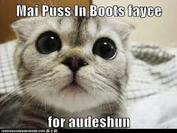 Puss In Boots Meme - mai puss in boots fayce lolcats lol cat memes funny cats