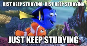 Dory Memes - 20 just keep swimming memes to motivate you sayingimages com