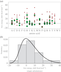 The Interplay Of Physical And Evolutionary Interplay Between Structure Energy And Epistasis In