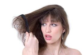sollutions to dry limp hair 6 effective home remedies to revive dull and limp hair